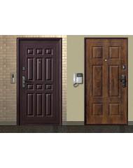 Дверь Форпост В-1